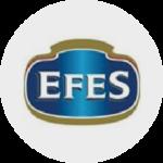 Efes Technoplan